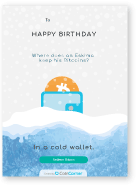 cold wallet card